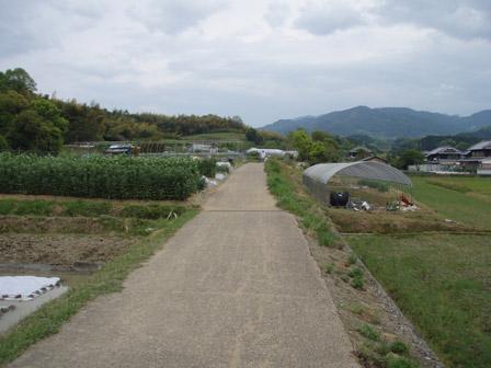asuka_noudou.jpg