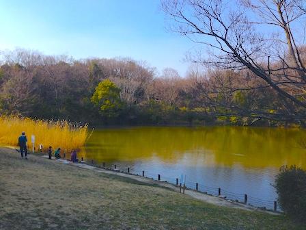 2014-03-23 15.56.12.jpg