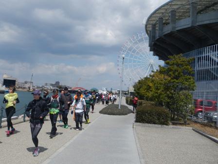 hanami2012_0012.jpg