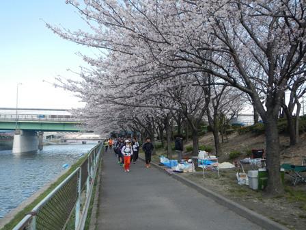 hanami2012_005.jpg