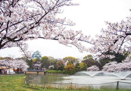 hanami_hyoushi.jpg