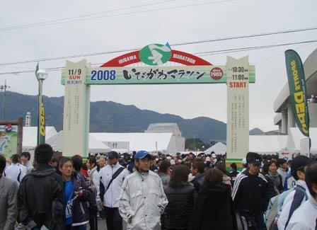 ibi_gate.jpg