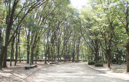 meijou_hyoushi.jpg