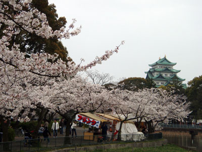 meijou_shiro001.jpg