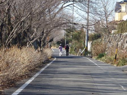 miyoshiike_minka.jpg