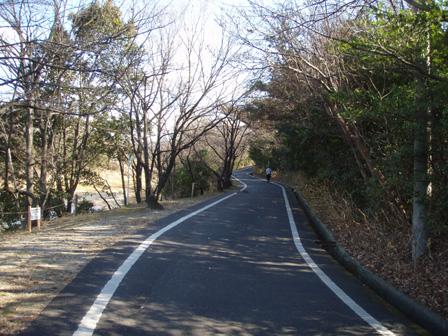 miyoshiike_road01.jpg