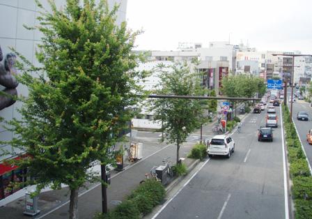 motoyama_hyoushi.jpg