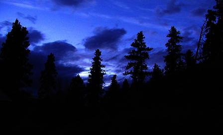 nightnight01.jpg