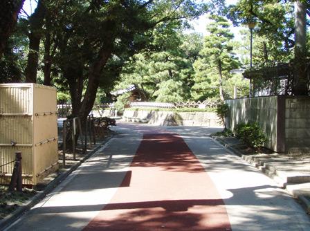 road003.jpg