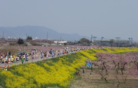 09nagano_hyoushi.jpg