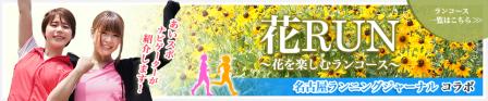 hana_banner.JPG