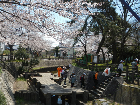 hanami2012_0010.jpg