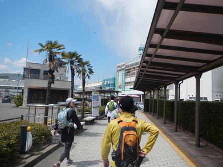 hanami2012_0017.jpg