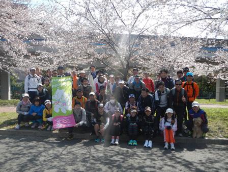hanami2012_003.jpg
