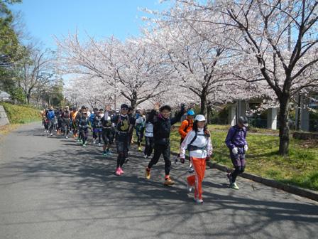 hanami2012_004.jpg