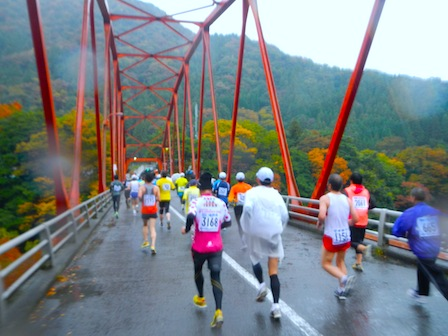 ibigawa2012.jpg