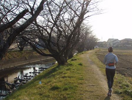 iwakura002.jpg