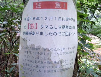 iwasu_kuma.jpg