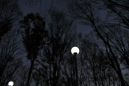 nightrun001.jpg