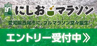 nishio2--2.png