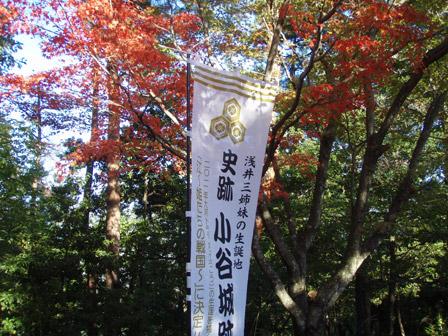 odani_kouyou.jpg
