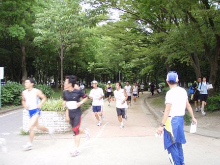 race002.jpg