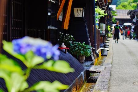 takayama0001.jpg