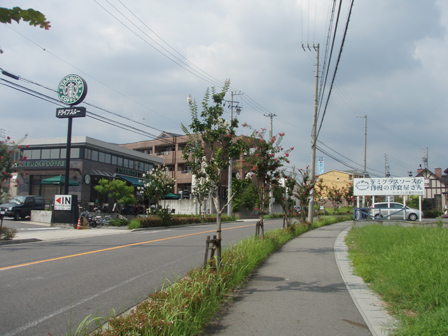 takenoyama01.jpg