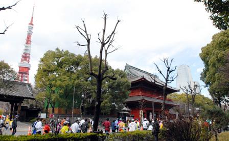 tokyotokyo001.jpg