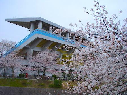 yamazaki002.JPG