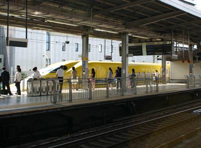 yellow002.jpg