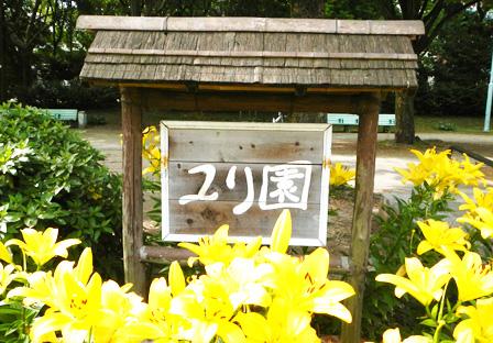 yuri001.jpg